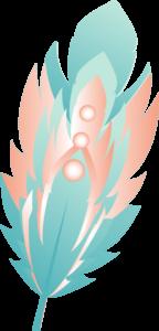 plume-youdou