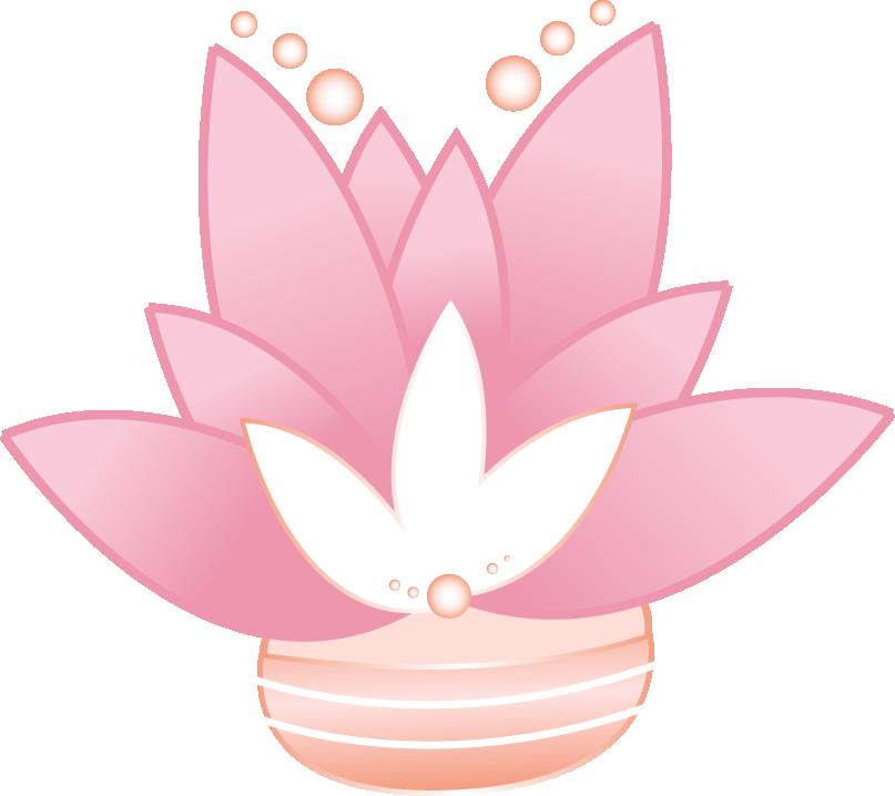succulente-youdou