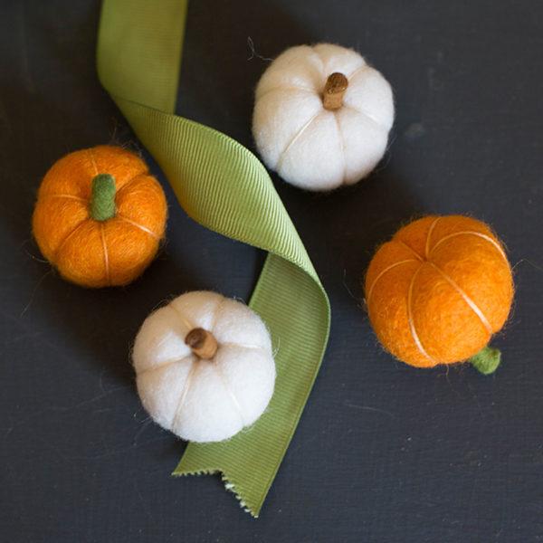 citrouille-laine-cardée